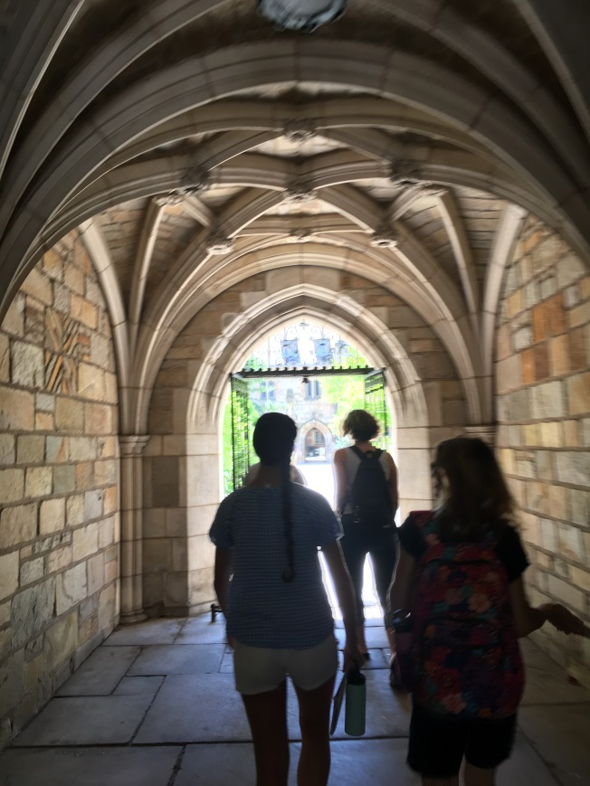 Yale University New Haven Connecticut July 2018 Liz OSullivan